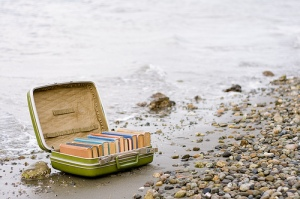 beach_books(2)