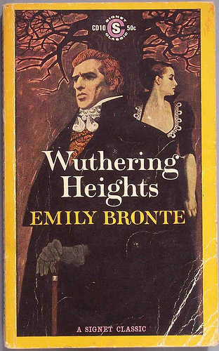 Wuthering heights images essay