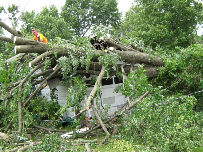 Our garage hit by a tree.