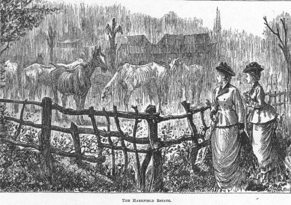 Grialy illustration of Farnfield.