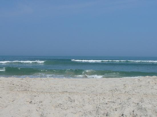 The beach at Assateague, Virginia.