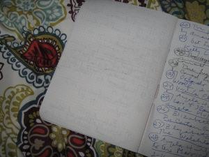 My book journal.