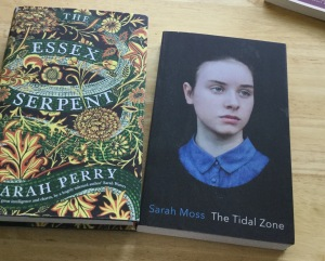 new-books-essex-serpent-and-sarah-moss