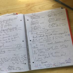 notebook-latin-open