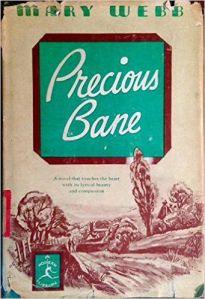 mary-webb-precious-bane-60de0240bc0947471016e4a87852a4ae