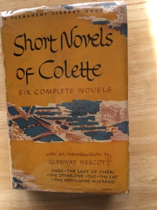 short-novels-of-colette-good-picture