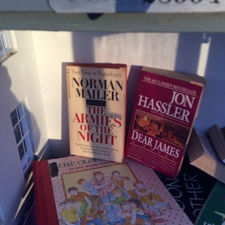 Norman Mailer, jon hassler little free library