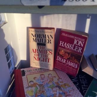 Norman Mailer, jon hassler little free library